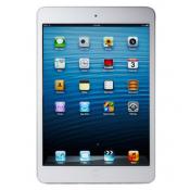 iPad Mini 16GB 4G + Wifi (Đã Active)