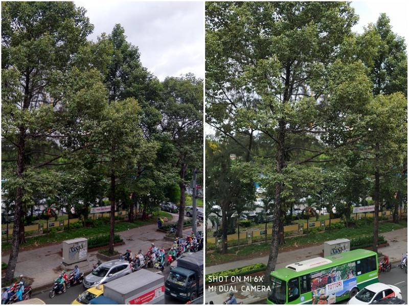 hình chụp camera x6, 6x cây cối
