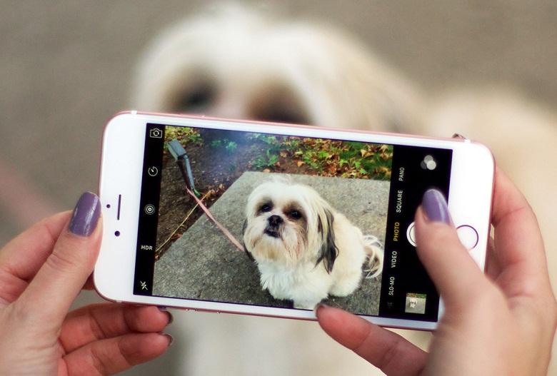 Camera iPhone 6S Plus