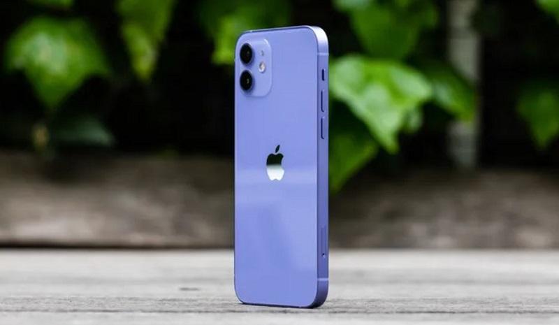 Mặt lưng iPhone 12 tím