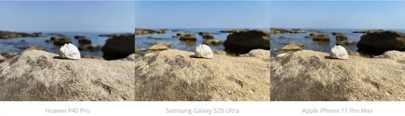 chụp ảnh vỏ sò trên bãi đá
