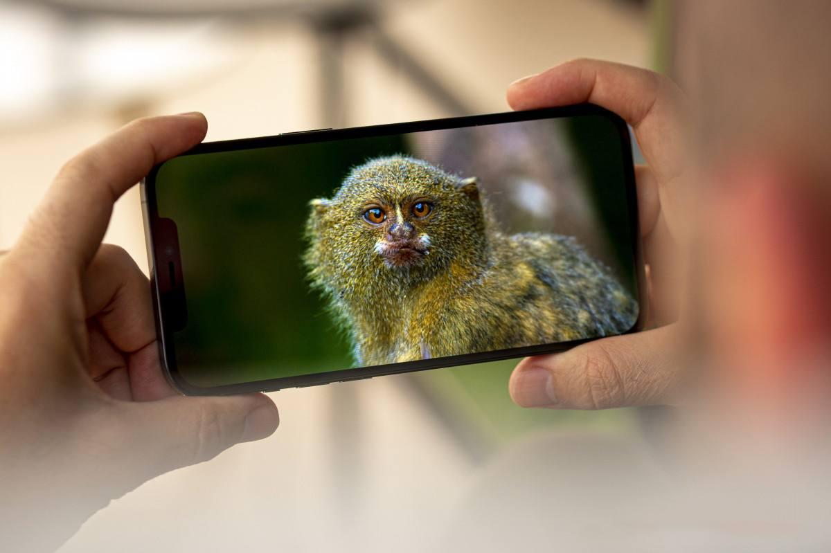 màn hình iphone 12 pro max lớn