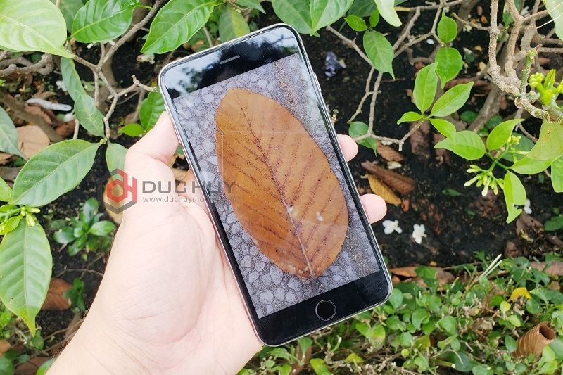 iphone 6s plus camera giá rẻ