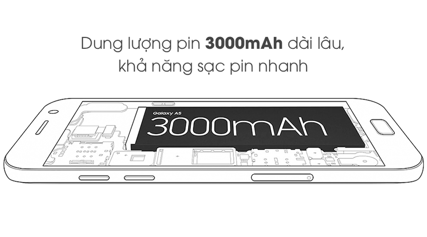 pin_moby-i6